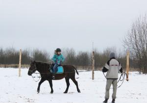 конные занятия
